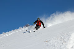Skier on the hill stock image