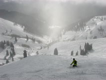 Free Skier In Powder Stock Photos - 12453103