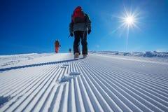 Free Skier Is Posing At Camera At Gudauri Resort In High Mountaing Of Royalty Free Stock Photo - 33963015