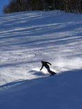 Skier in the moguls Stock Image