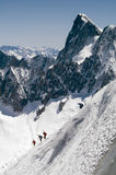 Skier on Mont Blanc Stock Image
