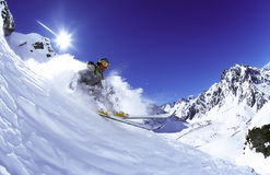 Skier in powder snow, Chile Stock Images