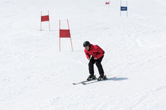 Skier without ski sticks coming down the slope. MOROZNAYA MOUNTAIN, YELIZOVO, KAMCHATKA, RUSSIA - APR 17, 2015: Skier in red and black outfit coming down the Royalty Free Stock Photos