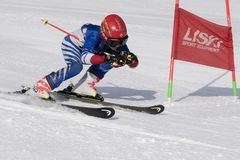Skier skiing down mountain slope during competition alpine skiing giant slalom royalty free stock photo