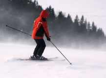 A skier is skiing down the slope in a forest. Man is wearing red jacket. Blizzard Stock Photo