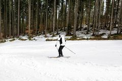Skier is skiing down the slope in the woods. In winter Royalty Free Stock Photography