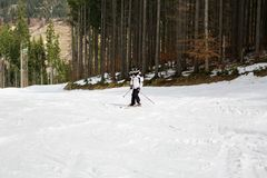 Skier is skiing down the slope in the woods. In winter Stock Photos