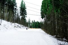 Skier is skiing down the slope in the woods. In winter Stock Images