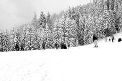 Skier on snowy mountainside Royalty Free Stock Photos