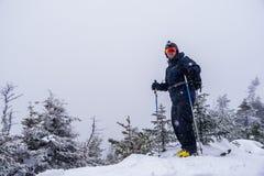 Skier_on_summit Stock Photos