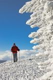 Skier on the top of the hill near ice figure. On mountain resort Stock Photo