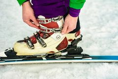 The skier wears footwear for skiing and fixes the fastener. 2019 stock image