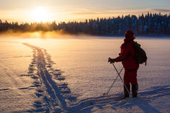 Skier in wilderness Stock Image