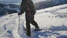Skier Winter Panorama Sun View Slowmotion stock video