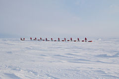 Skiers go to the North pole from Russian ice camp Stock Images