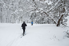 The skiers in the Park. stock photos