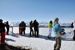 Skiers in a ski area Royalty Free Stock Images