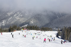 Skiers and snowboarders enjoying good snow. JASNA, SLOVAKIA - February 12: Skiers and snowboarders enjoying on slopes of the best ski resort, Jasna, in Slovakia royalty free stock photography