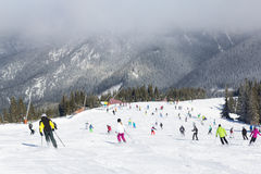 Skiers and snowboarders enjoying good snow. JASNA, SLOVAKIA - February 12: Skiers and snowboarders enjoying on slopes of the best ski resort, Jasna, in Slovakia royalty free stock photo