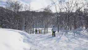 Skiers and Snowboarders enjoying the slopes stock footage