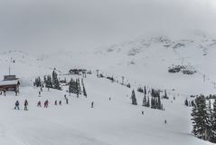 Skiers and snowboarders going down slopes of Whistler Blackcomb. Aerial photo of large group of people skiing and snowboarding from top of the mountain with Royalty Free Stock Images