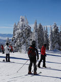 Skiers and snowboarders on top of Storm Peak Stock Photo