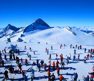 Skiers in winter Royalty Free Stock Image