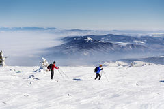 Skiers in the winter mountain Stock Image
