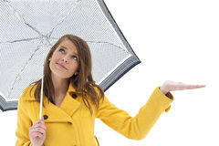 Skies are clearing but still a chance of Rain. An attractive young woman with an umbrella reaches out to see if it is raining or snowing. Isolated on a white Stock Photos