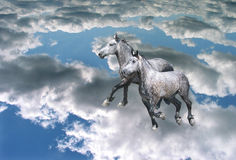 Through the Skies. Horses Are Springly Skipped From a Cloud to a Cloud stock illustration