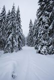 Skieur de Backcountry poussant par le brouillard sur une pente neigeuse Ski voyageant en états d'hiver rude Sport de voiture de t photographie stock