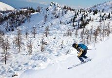 Skieur de Freeride photographie stock libre de droits