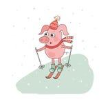 Skieur mignon de porc Beau personnage de dessin animé Image libre de droits