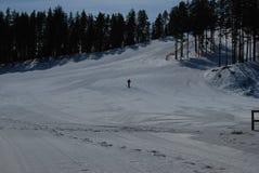 Skieur sur la pente Photos libres de droits