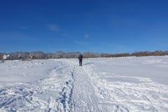 Skieur sur une promenade sur un champ neigeux Promenade de ski le bel hiver de jour images libres de droits
