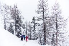 Skieurs de Freeride images libres de droits