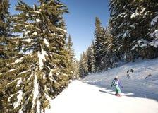 Skieurs sur la piste par des arbres Photographie stock libre de droits