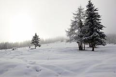 Skifahren-Erholungsort Zillertal-Arena. Gerlos, Österreich. Stockbilder