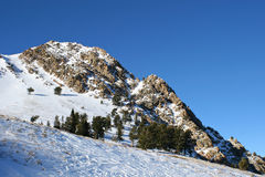 Skifahren-Kaskaden Stockfoto