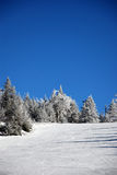 Skifahrenhügel Stockbild