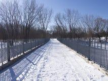 Skifahrenweg im Winter in einem Park lizenzfreie stockfotos