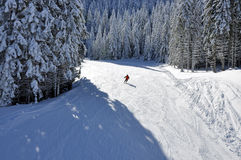 Skifahrer auf einer Skibahn und schneebedeckten Tannenbäumen Stockbilder
