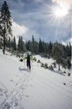 Skifahrer, der durch den Schnee nahe einem Tannenwald geht Stockbild