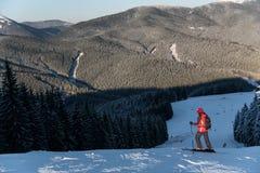 Skifahrer an der Spitze des Abfalls Berge und Wälder genießend Lizenzfreie Stockfotos
