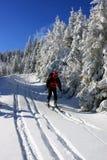 Skifahrer, der vom Berg absteigt Stockfotografie