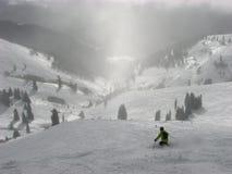 Skifahrer im Puder Stockfotos