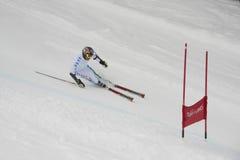 Skifahrer im Riesenslalom-Test Lizenzfreie Stockfotos