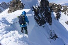 Skifahrer im tiefen Pulver, extremes freeride Stockbilder