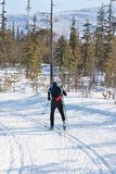 Skifahrer lässt Querfeldeinskifahren laufen Stockbild