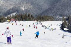 Skifahrer und Snowboarder, die guten Schnee genießen Lizenzfreie Stockfotos